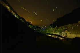 落水地区の蛍