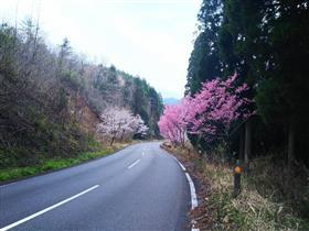 蔵小野~田代地区付近